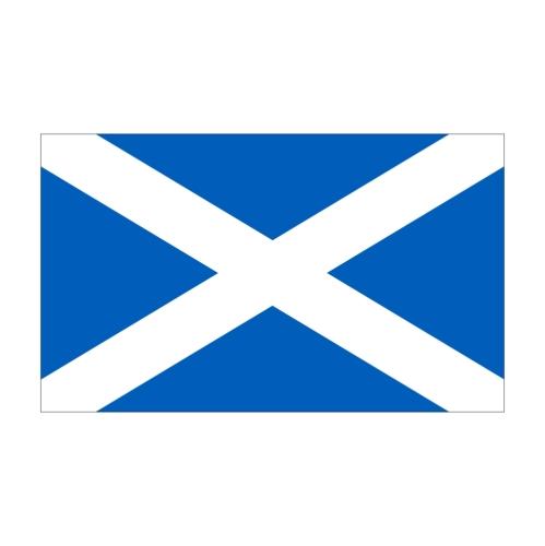 Flagge Schottland 30 x 45 cm